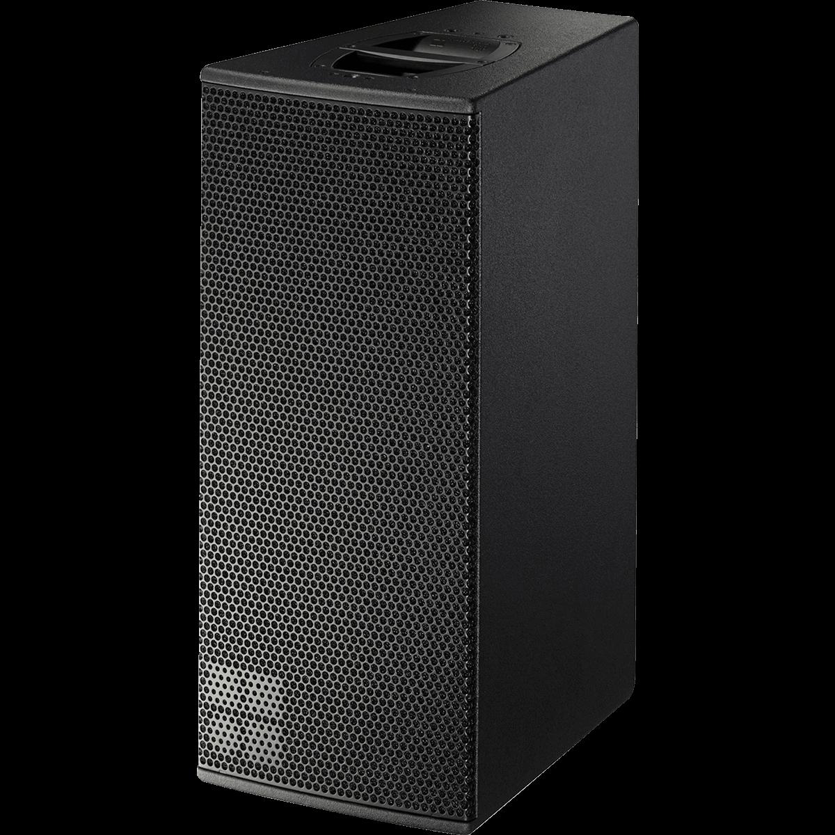 V10P loudspeaker front